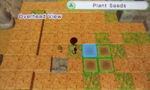 Overhead View Mode | Harvest Moon Skytree Village